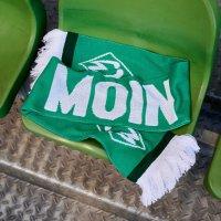 Schal MOIN